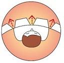 Конструкция пухового одеяла Climashenge